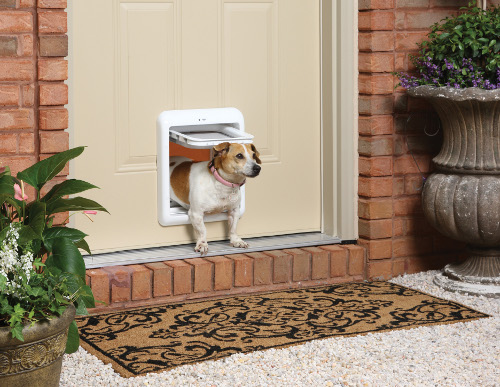 Paw Pet Doors Perth